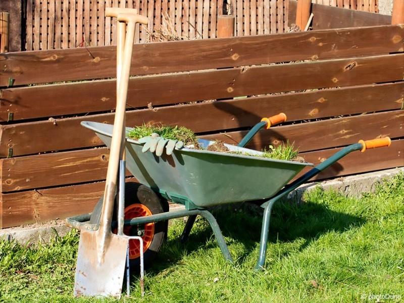10 rešitev za uspešno vrtnarjenje