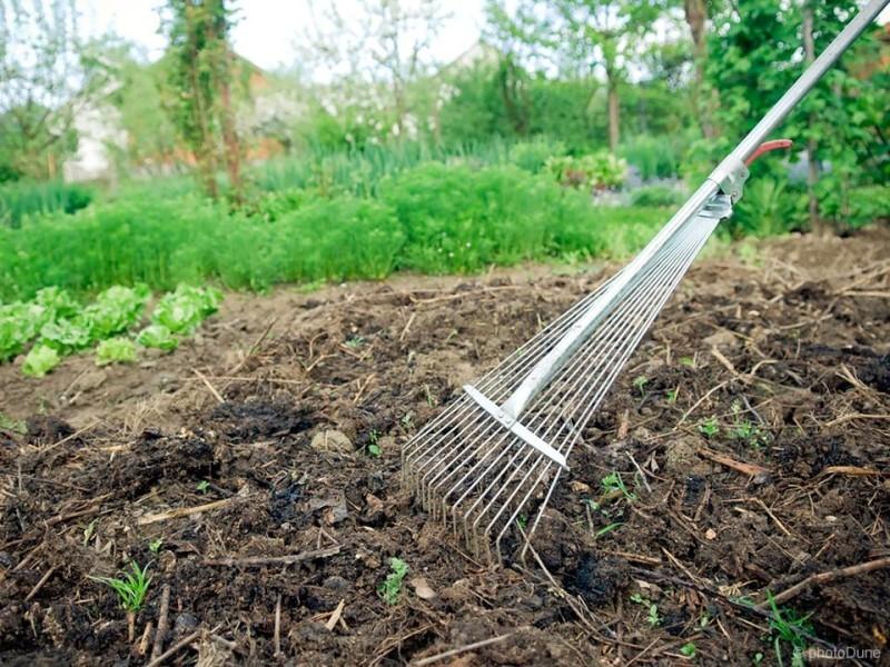 Kako naredimo in uporabimo domač kompost