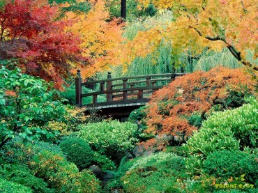 Okrasni vrt v jesenskih barvah