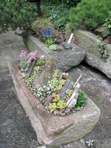 Izbira posod za alpski vrt na balkonu ali terasi