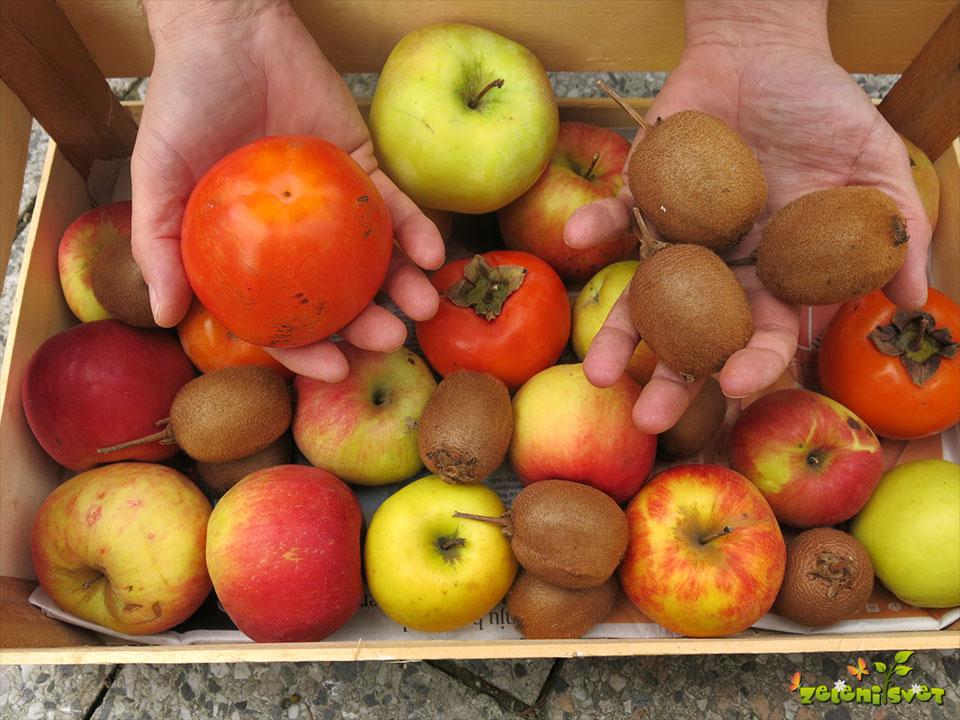 kaki-kivi-jabolka-mehcanje