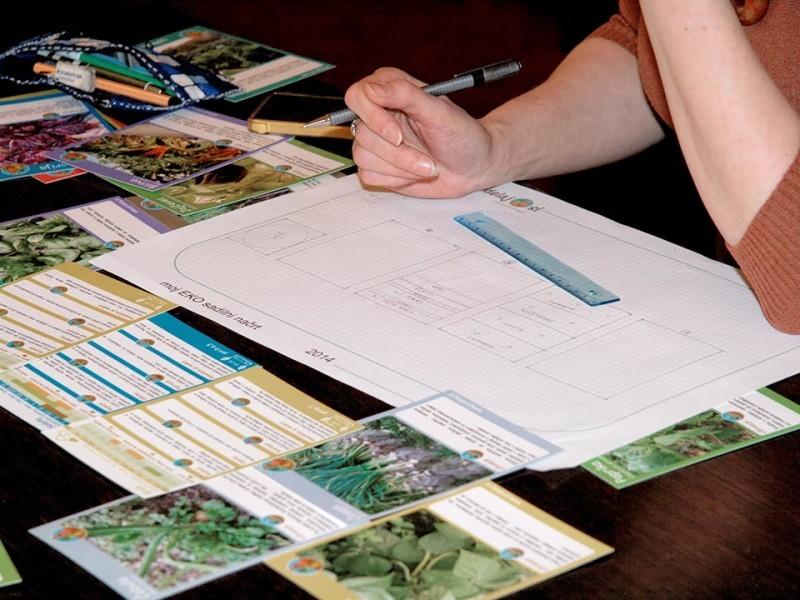 Načrtovanje domačega EKO zelenjavnega vrta