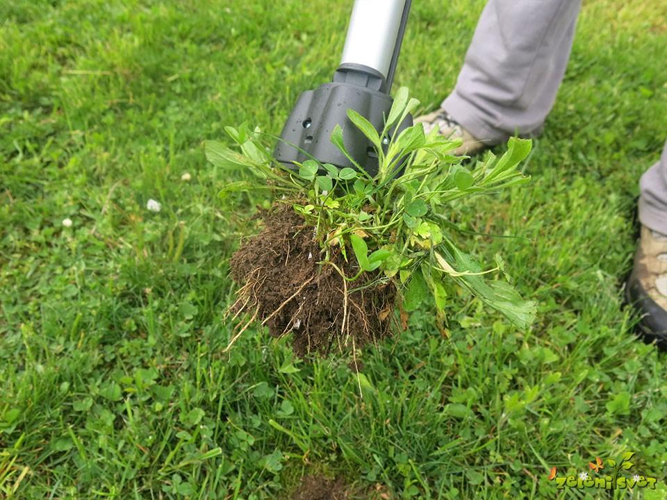 odstranjevanje-plevela-2 (1)