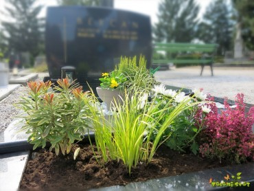 Ideje za zasaditev groba