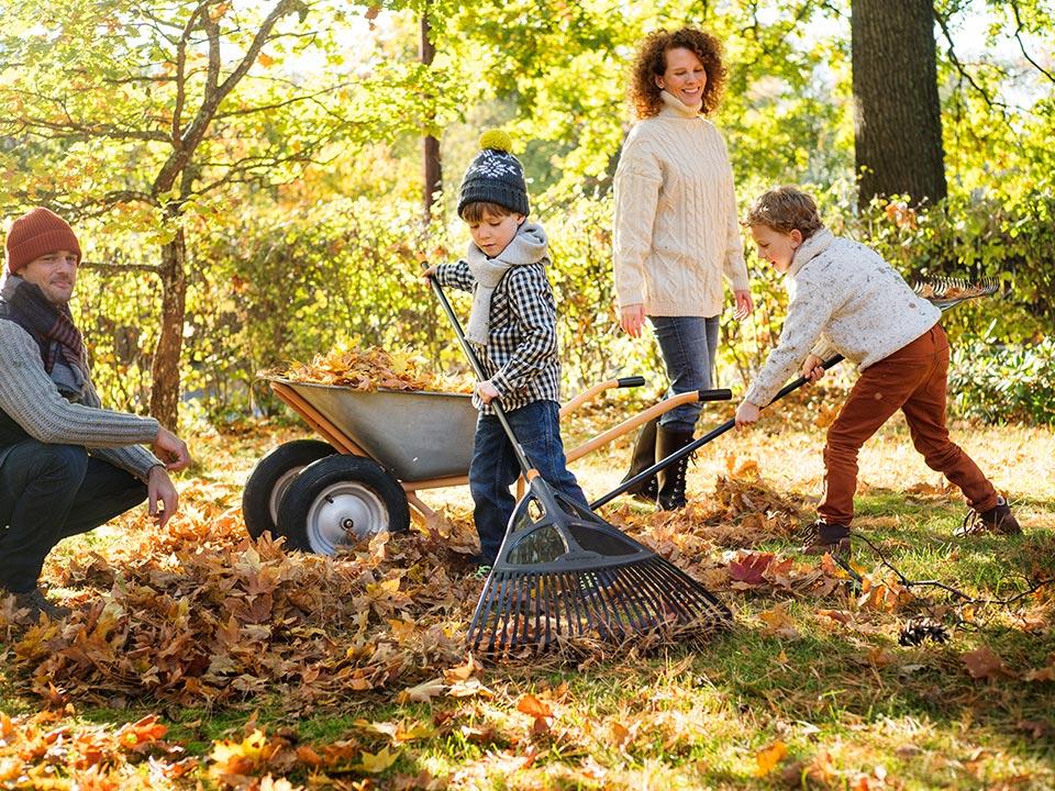 Enostavno čiščenje trave, mahu in listja.