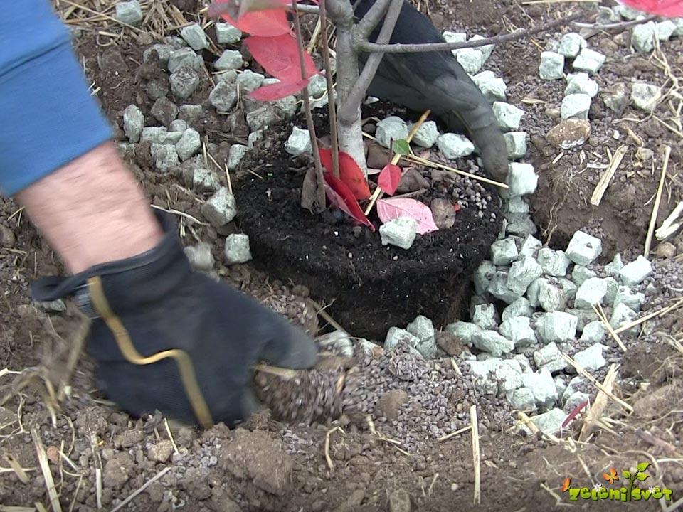 mešanje gnojila in zelenih kock