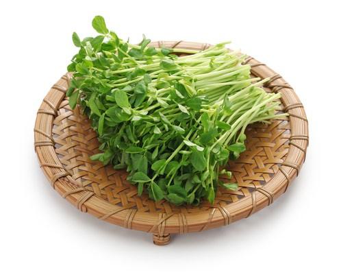 azijska-zelenjava
