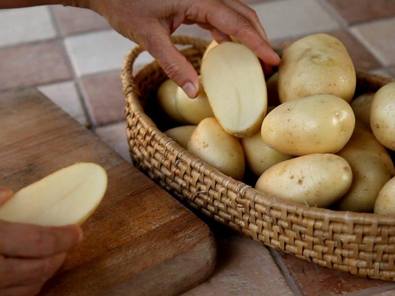 Priporočene sorte krompirja za vsak vrt