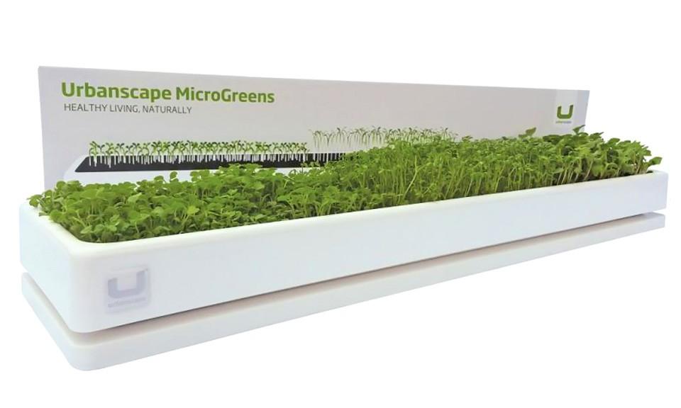 mikro-zelenjava-promo