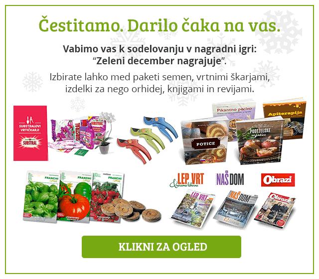 popup-nagradna-igra-zeleni-december2016-flakes