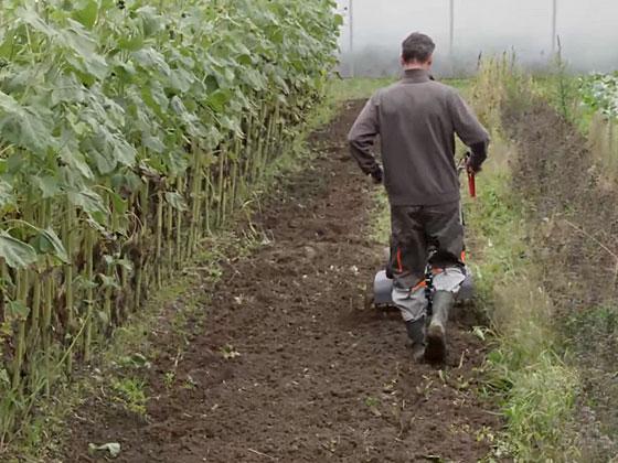 Priprava tal v poletnem času.