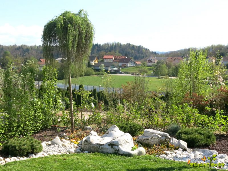 Urejeni okrasni vrtovi