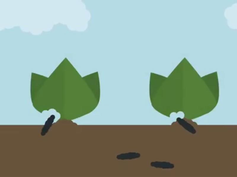 objedanje rastlin