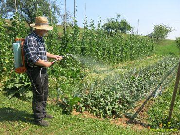 Uporaba koristnih mikroorganizmov za zdravje rastlin