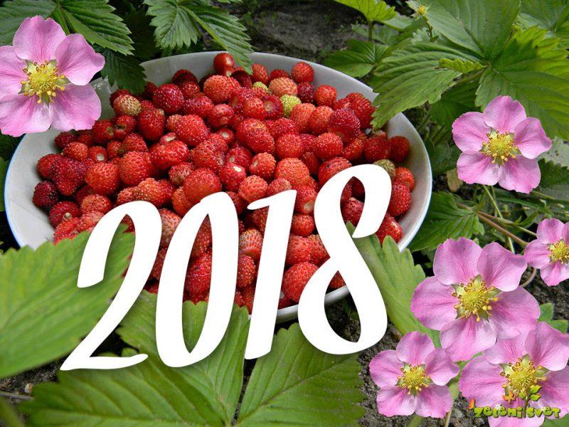 Cvetoče in užitne posebnosti 2018