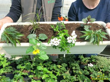 7 rešitev za vaš balkon ali teraso