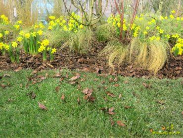 Praktične okrasne rešitve za vaš vrt