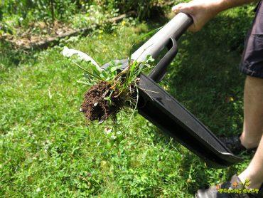 Učinkovito odstranjevanje plevelov in prijazna košnja