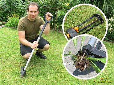 Rešitev za agresiven plevel in zeleno trato