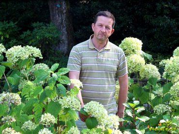 Posebne, odporne in barvite hortenzije za vsak vrt