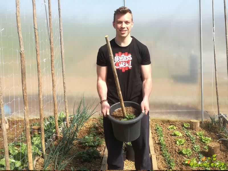 Marec v domačem rastlinjaku