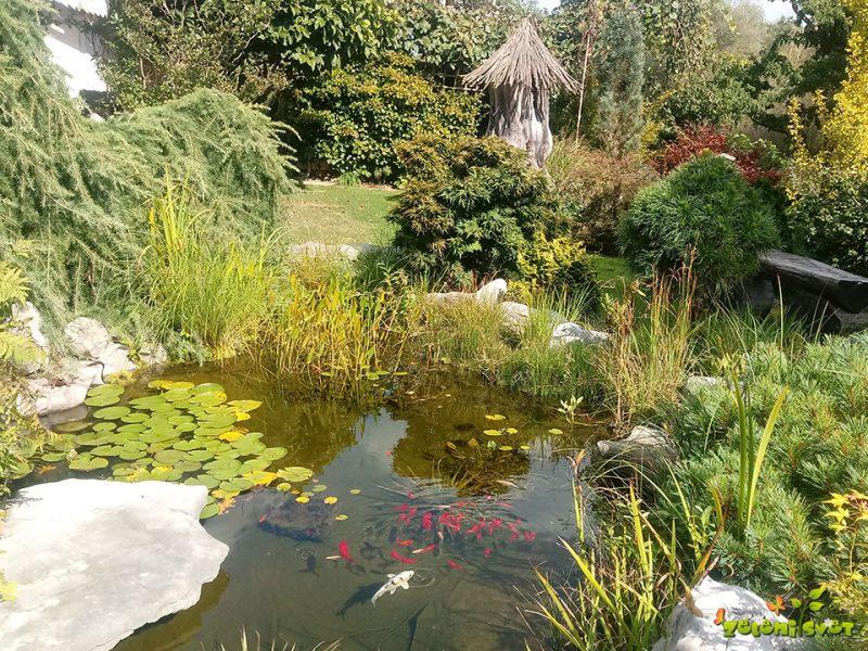 Čudovit okrasni vrt Roberta in Olge v Prlekiji