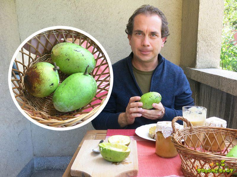 Asimina in domače sladice polne zdravja