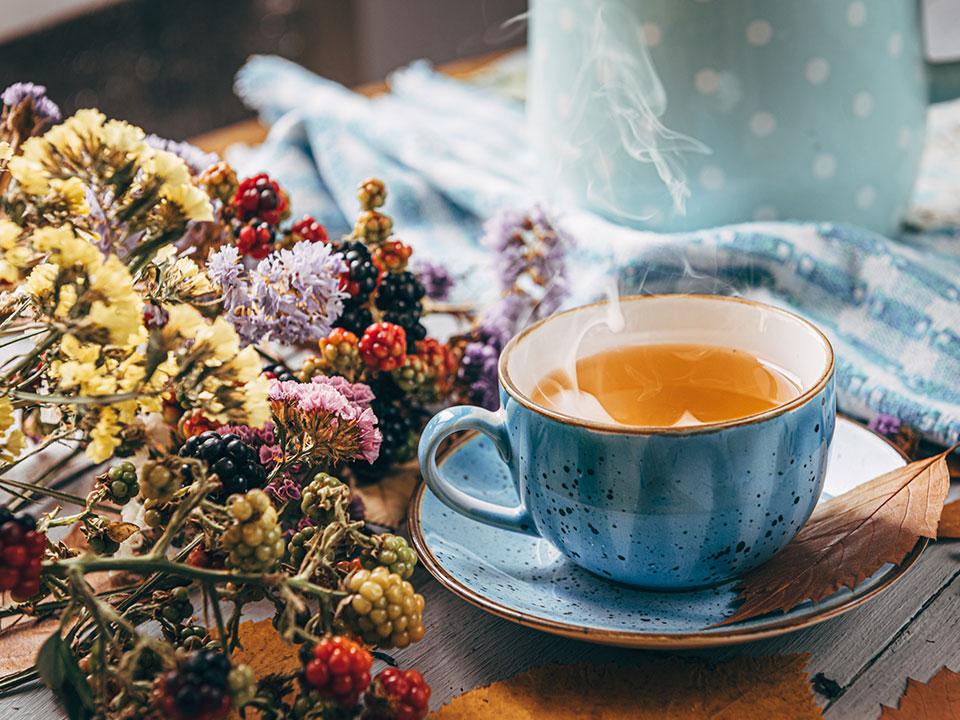 Katere čaje pijemo pozimi?