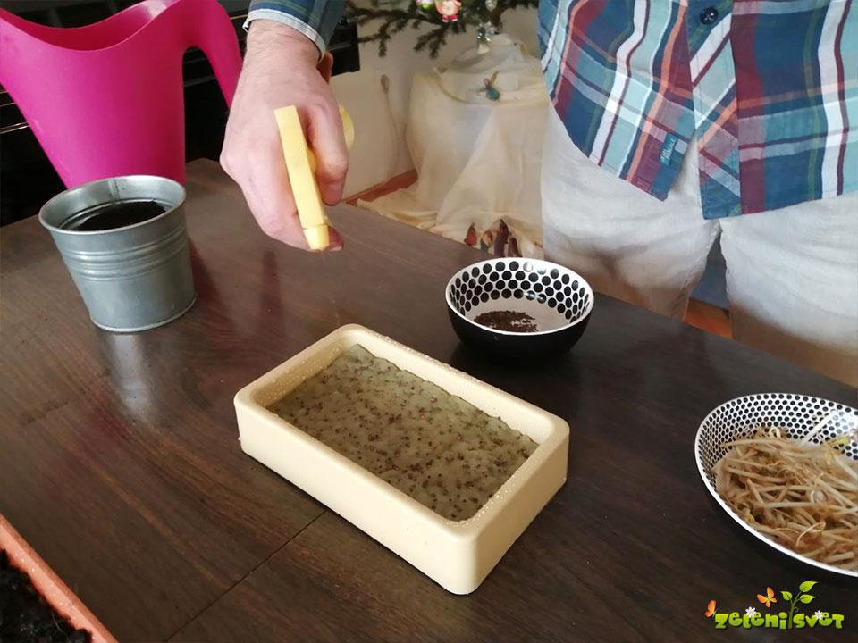 mikro zelenjava gojenje