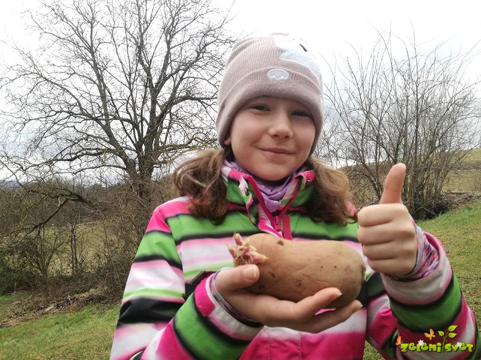 krompir alouette