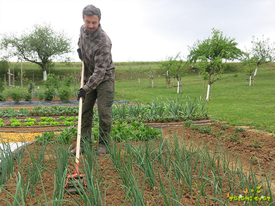 freza orodje za vrt