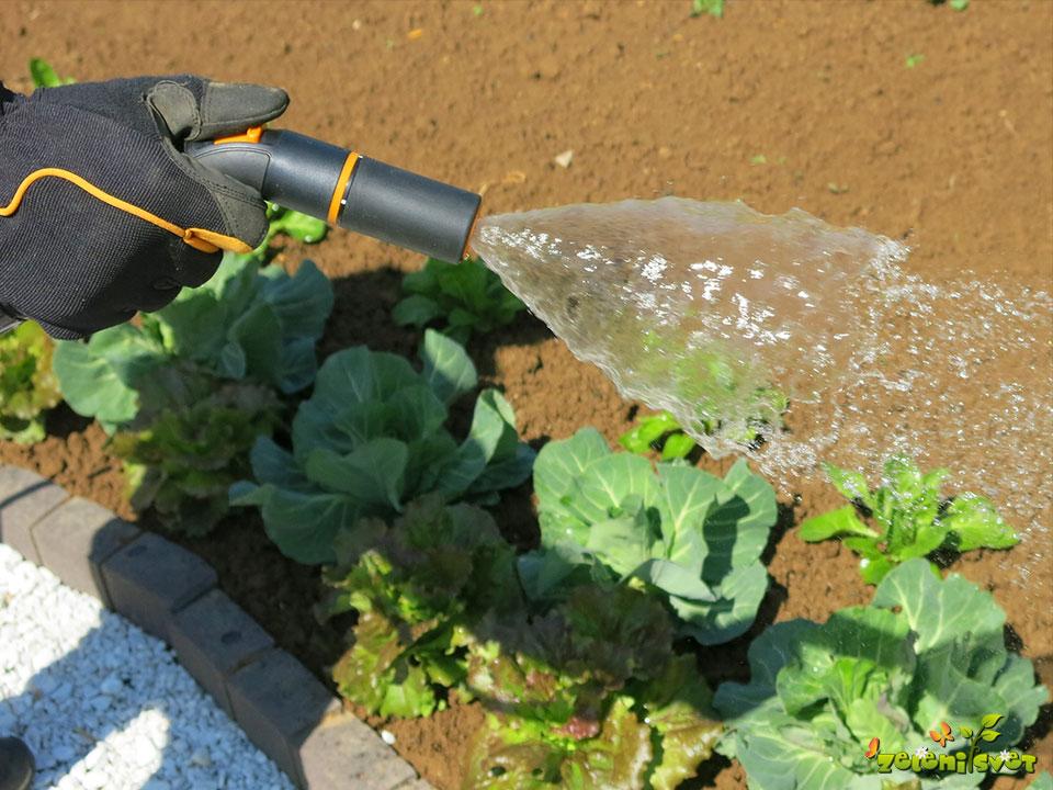 pršenje in zalivanje vrta