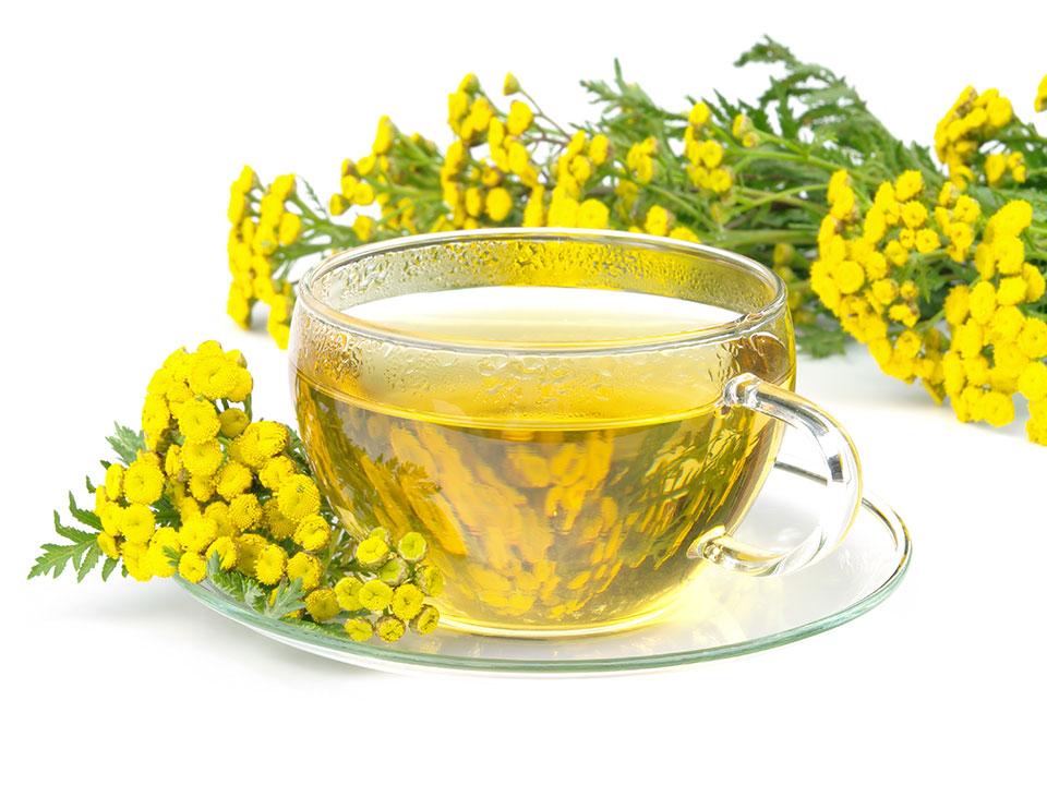 čaj iz vratiča, čaj vratič