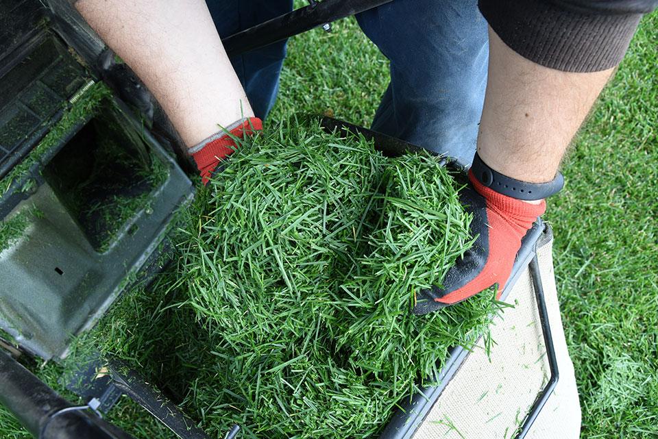 zastirka iz trave