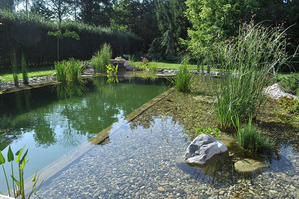 ribnik za plavanje