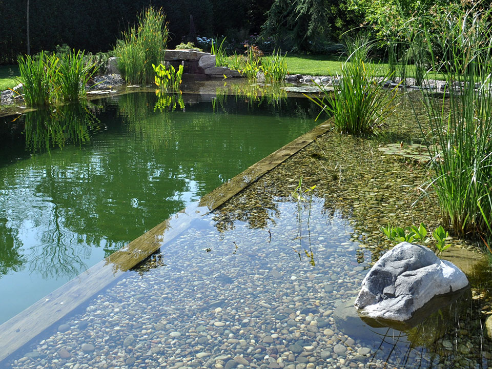 Naravni vrtni plavalni ribnik in inovativne vrtne savne