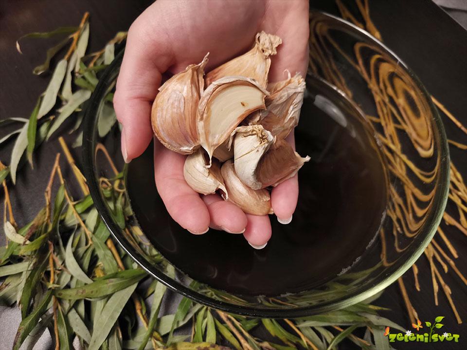 Vrbovo lubje za zdrav česen in boljše ukoreninjanje rastlin