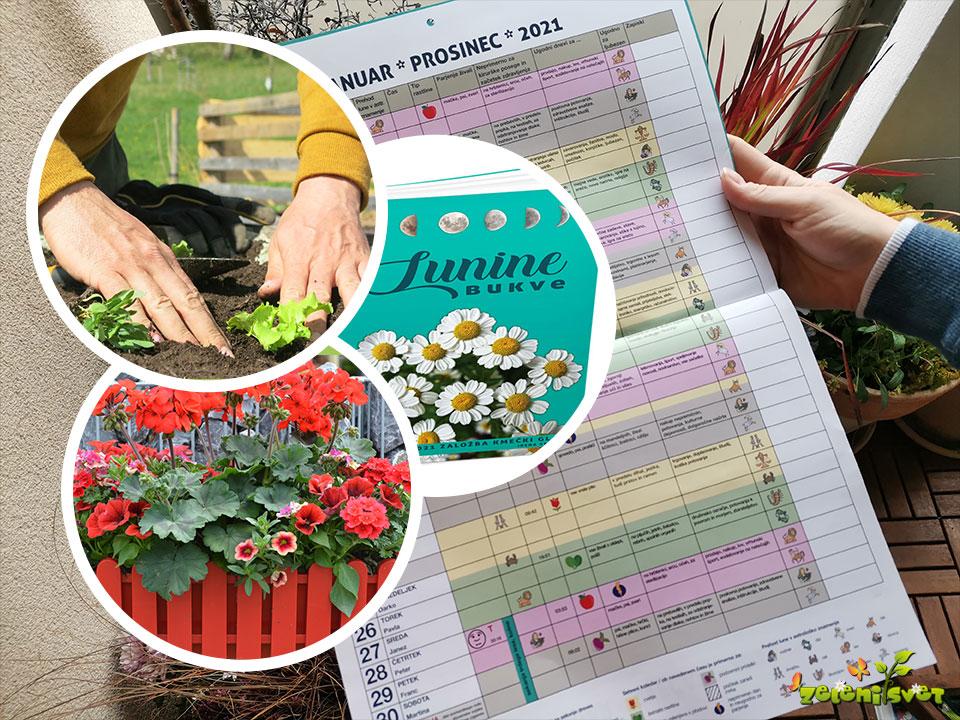 Setveni koledar, Lunine bukve in vrtna opravila po mesecih