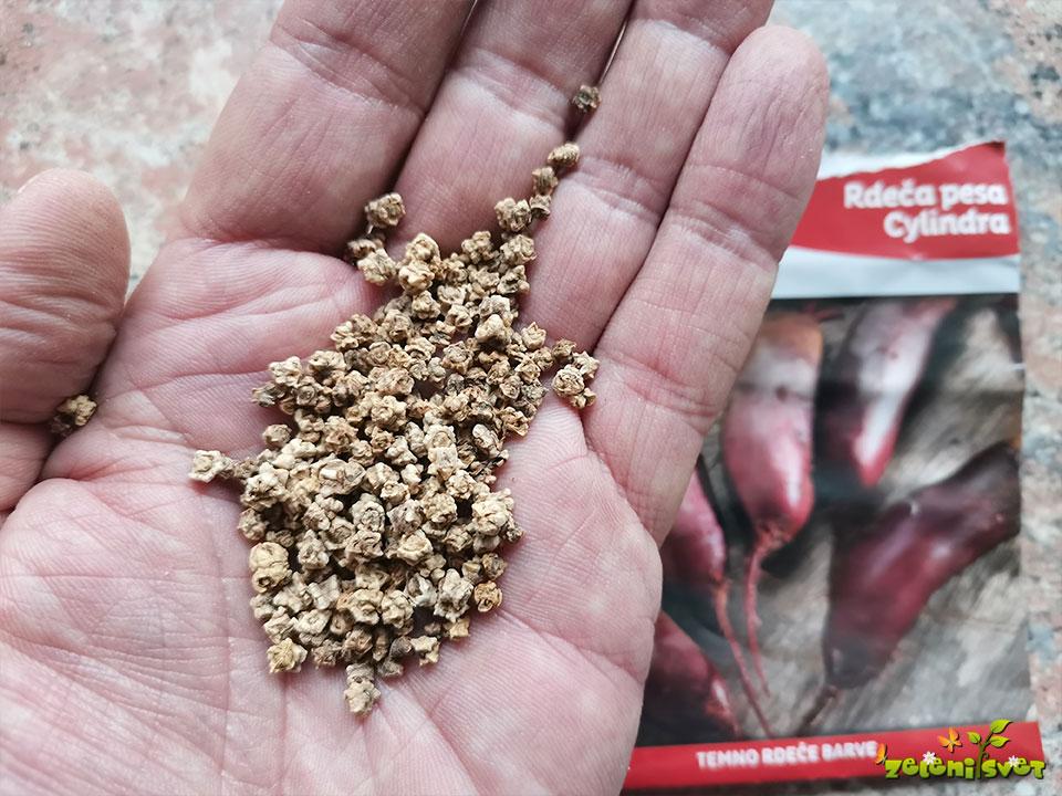 kaljivost semena