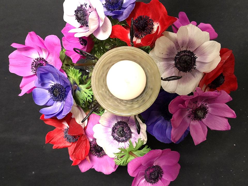 Pomladna lučka z anemonami in začetek pomladi