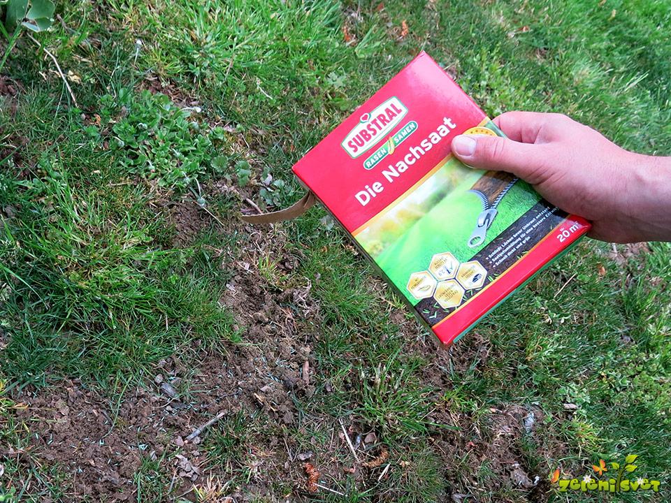 Travna mešanica za dosejevanje manjših praznih mest na travi