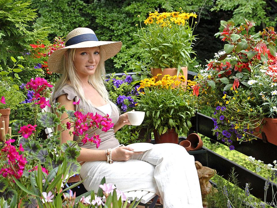 Cvetoči vrt na balkonu, domač paradižnik in uporabna zelišča