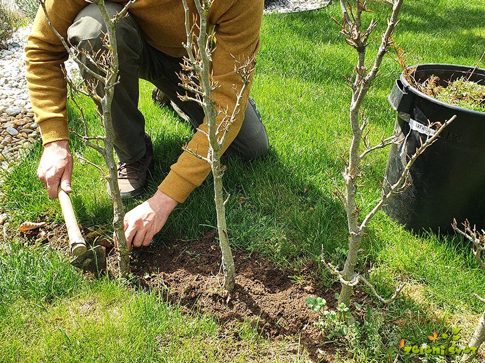 odstranimo plevel